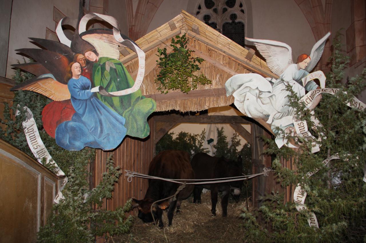 24 décembre, 20h00, Clémentine et César dans la crèche...