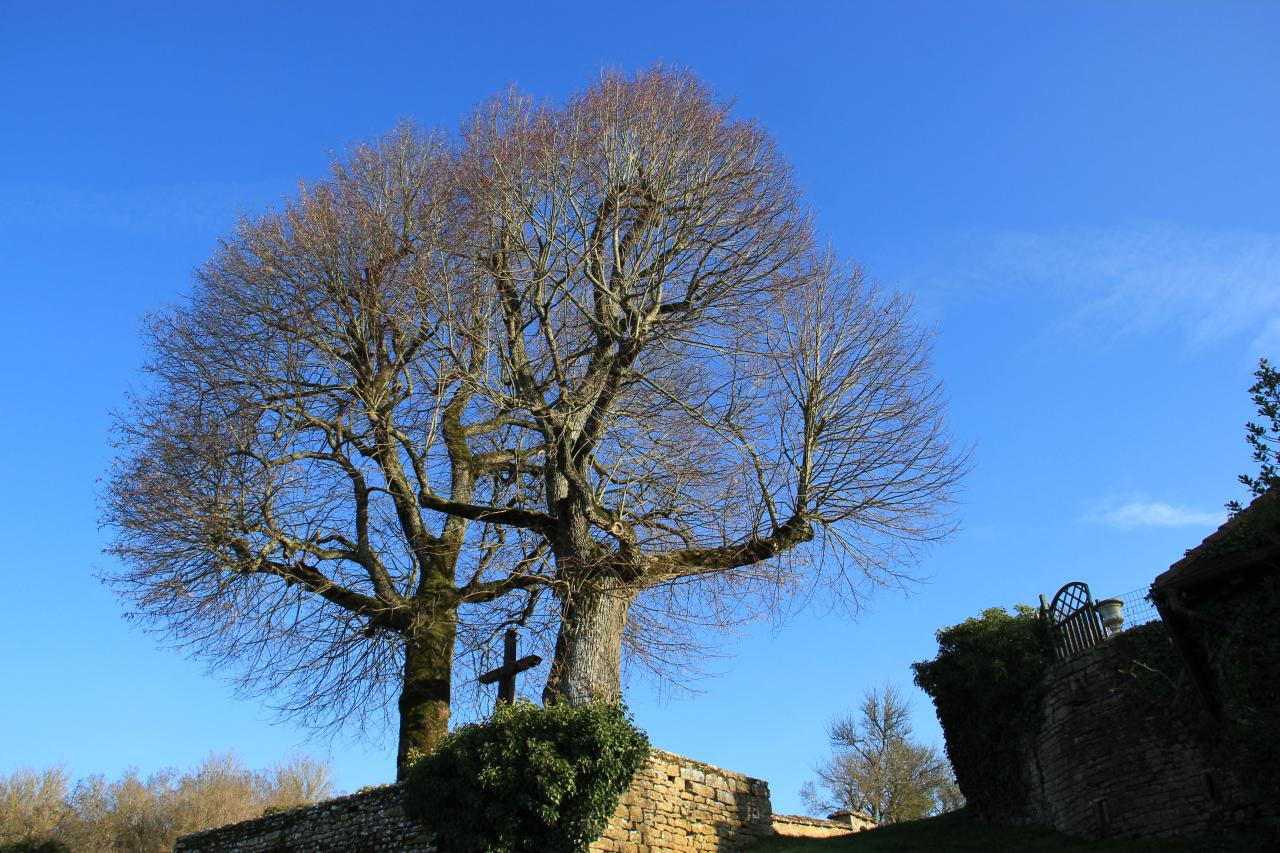 25 décembre au matin, La Croix de Mission sous un magnifique ciel bleu
