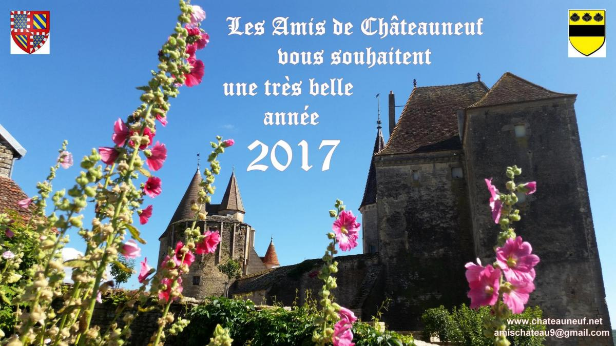 2017 01 01 voeux amis chateauneuf 03 site